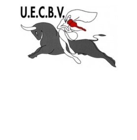uecbvlogo-website